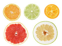 Set of cuts from citrus fruits Royalty Free Stock Images