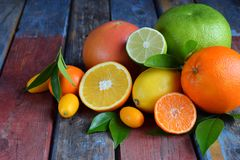 Set cytrus na drewnianym tle: pomarańcze, mandarynka, cytryna, grapefruitowa, wapno, kumquat, tangerine Świeże organicznie soczys obrazy royalty free