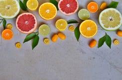 Set cytrus na lekkim tle: pomarańcze, mandarynka, cytryna, grapefruitowa, wapno, kumquat, tangerine Świeże organicznie soczyste o fotografia stock
