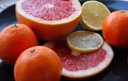 Set cytrus owoc na ciemnym glansowanym talerzu wyszczególniającym Obrazy Stock