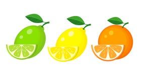 Set cytryna, wapno i pomarańcze z, plasterkami i zielonym liściem wektor Fotografia Stock