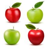 Set czerwieni, zieleni jabłczane owoc z i Obraz Stock
