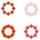 Set czerwoni i jesienni liści klonowy wzory Obrazy Stock
