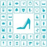 Set czterdzieści piękno ikon Obraz Stock