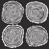 Set cztery drzewnych pierścionków wektorowy tło Obraz Stock