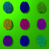Set of 3d rendered low poly brains illustration. Set of colorful pop art style, low poly brains illustration stock illustration