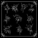 Set of dancing ballerinas. Set kit, group of young dancers ballerinas. Black and white. Vector illustration Royalty Free Stock Photos