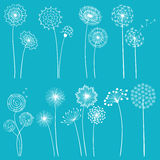 Set of dandelions. Set of hand drawn dandelions for your design Royalty Free Stock Image