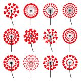Set of dandelions heart shaped on white background Stock Images