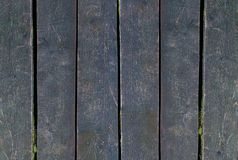 Set of dark boards of the panel wooden part of the weathered surface of a fence covered with moss stock image
