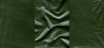 Set of  dark lime green leather textures Stock Image
