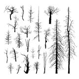 Set of dead trees. Set silhouettes of dead trees. Vector set of detailed silhouettes of trees without leaves on a white background isolated Royalty Free Stock Photo