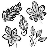 Set of Deco Leafs Stock Photo