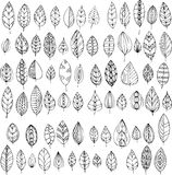 Set of decorative abstract leaves Stock Photography
