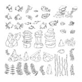 set of decorative aquarium elements, goldfish, shell, rock, puffer, neon, jellyfish, algae