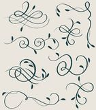 Set of Decorative Calligraphy flourish art with vintage decorative whorls for design.   Stock Photos