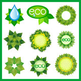 Set of decorative elements for eco design isolated Stock Photos
