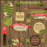 Set of decorative elements for eco friendly design Stock Photo