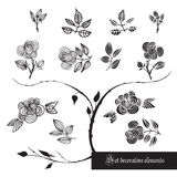 Set of decorative elements, roses and leaves, black and white Royalty Free Stock Image