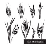 Set of decorative elements, tulips and leaves, black and white Stock Photos