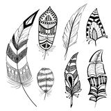 Set of decorative feathers. Set of decorative sketch of feathers Stock Photos