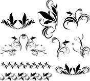 Set of decorative floral elements for design Royalty Free Stock Image
