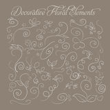 Set of decorative floral elements hand-drawn on a brown background for your design. Vector Stock Image