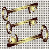 Set of decorative gold keys Royalty Free Stock Photo