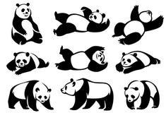 Set of decorative illustrations pandas. Isolated over white background. Hand drawn illustration Stock Photography