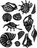 Set of decorative shell. Vector illustration Royalty Free Stock Image