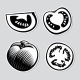 Set of decorative tomatoes Stock Image