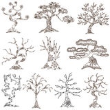 Set of 10 decorative trees Royalty Free Stock Photo