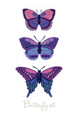 Set of decorative vector butterflies Royalty Free Stock Photo