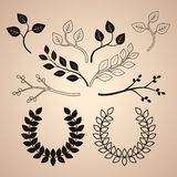 Set of Decorative Vintage Branches and Wreathes Royalty Free Stock Photos
