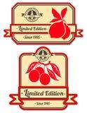 Set of decorative vintage labels. With fruits Royalty Free Illustration