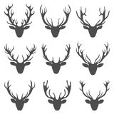 Set Deer Heads, Collection Stag Horns, Isolated on White Background Stock Photography