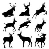 Set of deers vector silhouette illustration, isolated on white background. . Royalty Free Stock Images