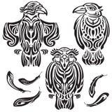 Set dekoracyjna wrona Obrazy Royalty Free