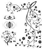 Set dekorative mit Blumenelemente Lizenzfreie Stockfotos