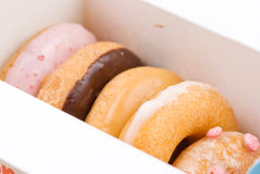 Set of delicious donuts in paper box Stock Image