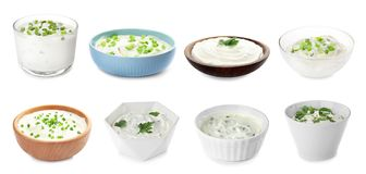 Set of delicious sour cream with herbs in bowls. On white background royalty free stock photography