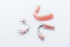 Set of dentures on white background Royalty Free Stock Image