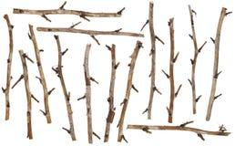 Set der trockenen Zweige lizenzfreie stockbilder