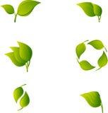 Set des abstrakten grünen Blattes lizenzfreie abbildung