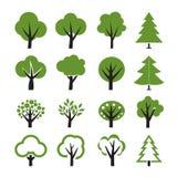 Set des Baums Stockfoto