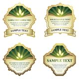 Set of design elements. Include additional format eps (Adobe Illustrator Stock Photos