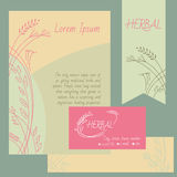 Set of design elements. Business cards, flyers Stock Photography