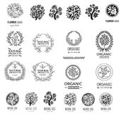 Floral logos set Stock Photos