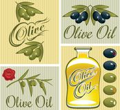 Set of design elements for olive oil Stock Photography