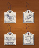 Set of 4 design elements seafood: jellyfish Royalty Free Stock Images